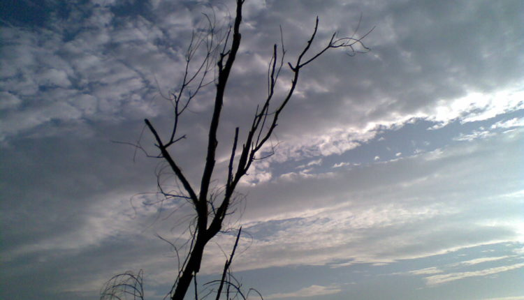 Lonely in the sky - The Sahiyadris